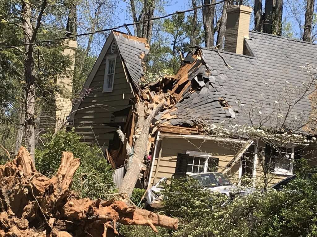 Storm damage from tornado or high wind causing tree falling on house